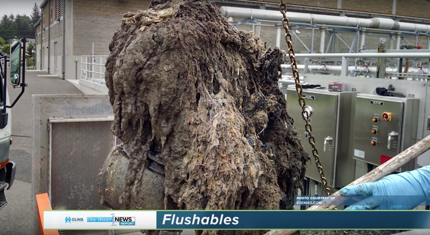 Featured Video: Flushable Wipe's Effects on Our Sewer System