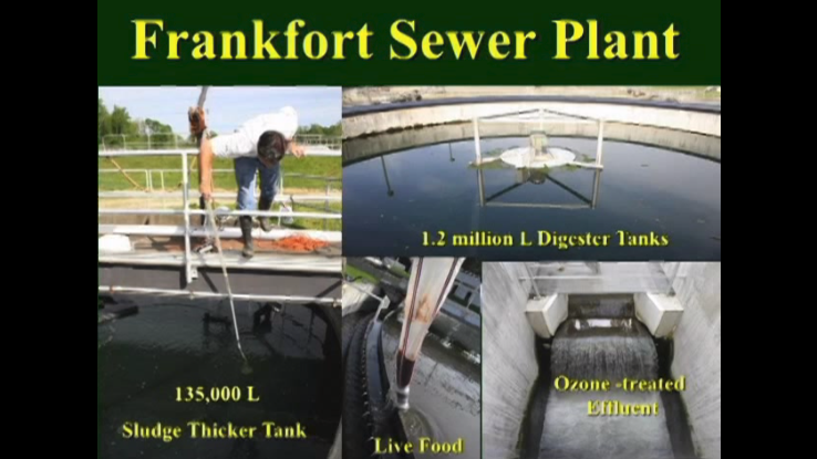 Featured Video: Using Decommissioned Wastewater Tanks for Fish Farming